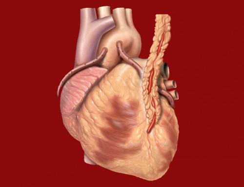 درمان تپش قلب با انگور